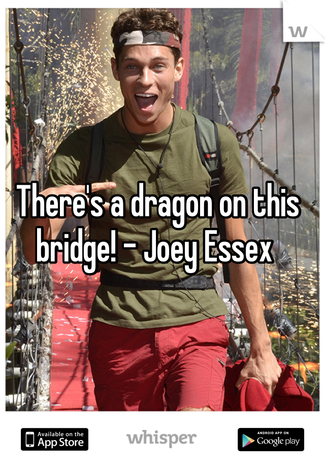 There's a dragon on this bridge! - Joey Essex