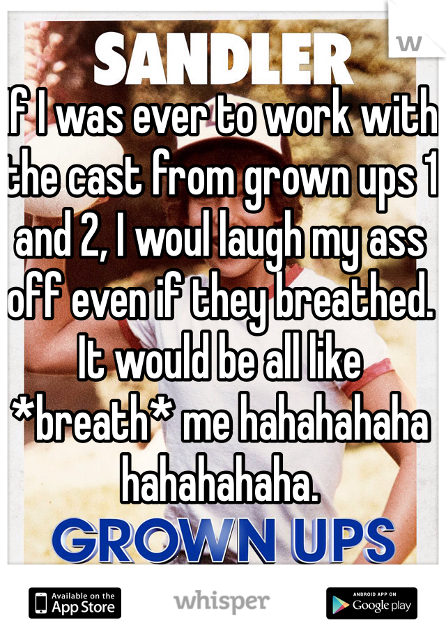 If I was ever to work with the cast from grown ups 1 and 2, I woul laugh my ass off even if they breathed. It would be all like *breath* me hahahahaha hahahahaha.