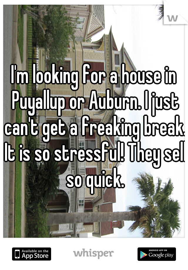 I'm looking for a house in Puyallup or Auburn. I just can't get a freaking break. It is so stressful! They sell so quick.