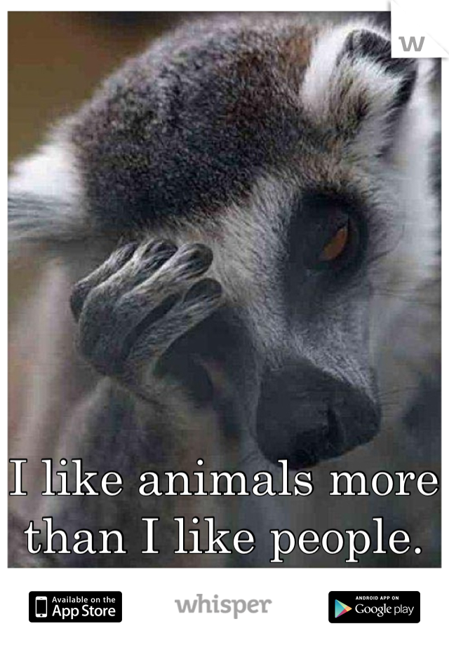 I like animals more than I like people.