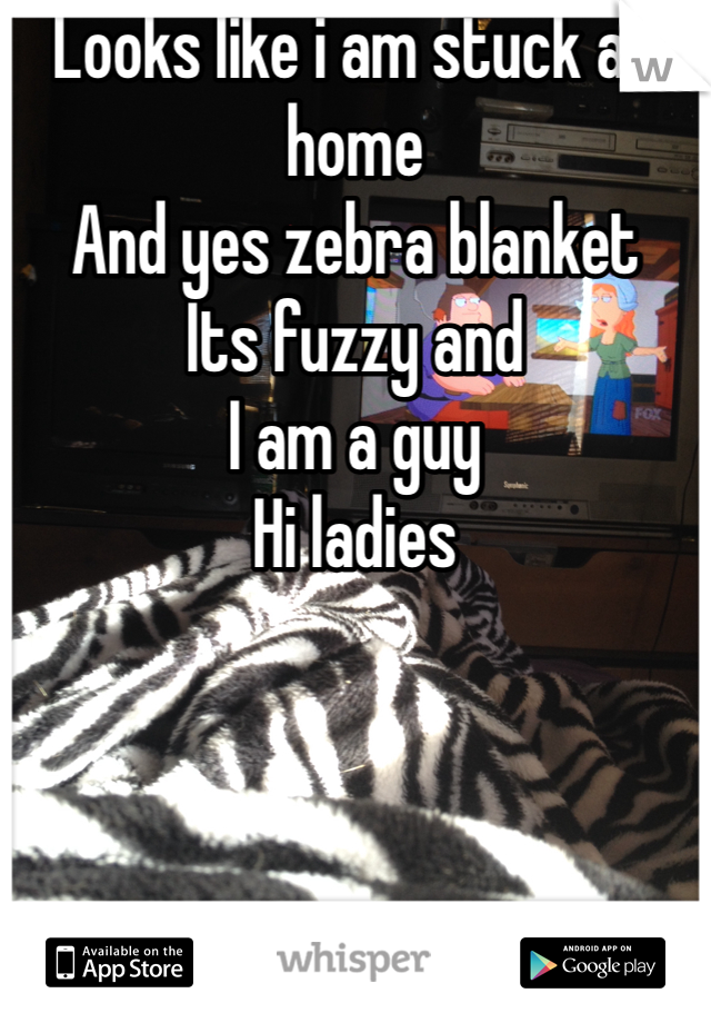 Looks like i am stuck at home And yes zebra blanket Its fuzzy and I am a guy Hi ladies