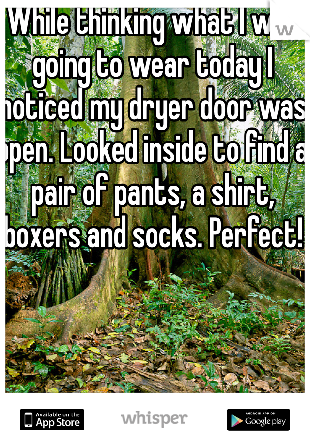 While thinking what I was going to wear today I noticed my dryer door was open. Looked inside to find a pair of pants, a shirt, boxers and socks. Perfect!