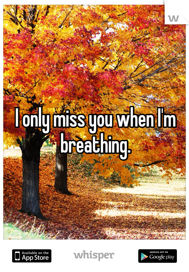 I only miss you when I'm breathing.