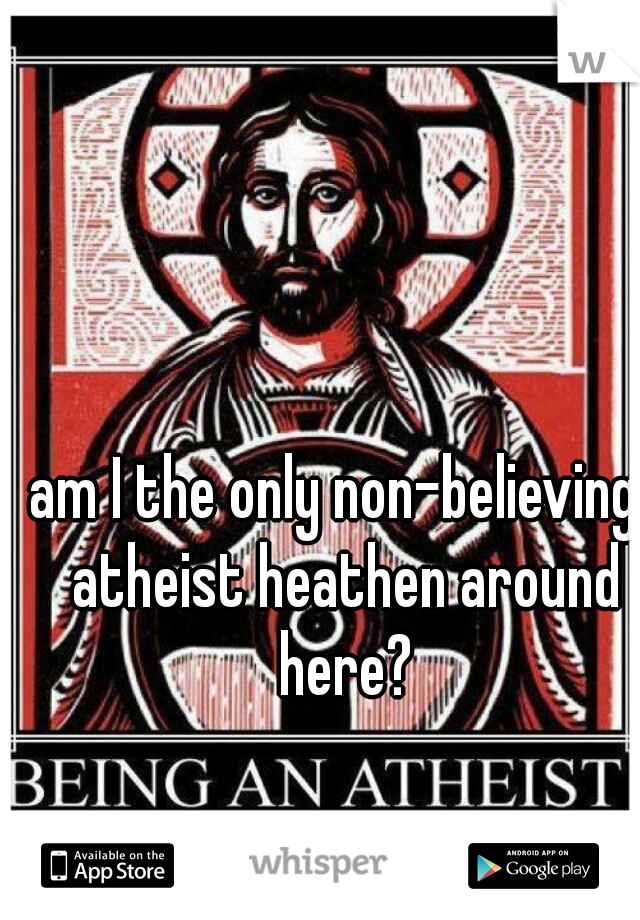 am I the only non-believing, atheist heathen around here?