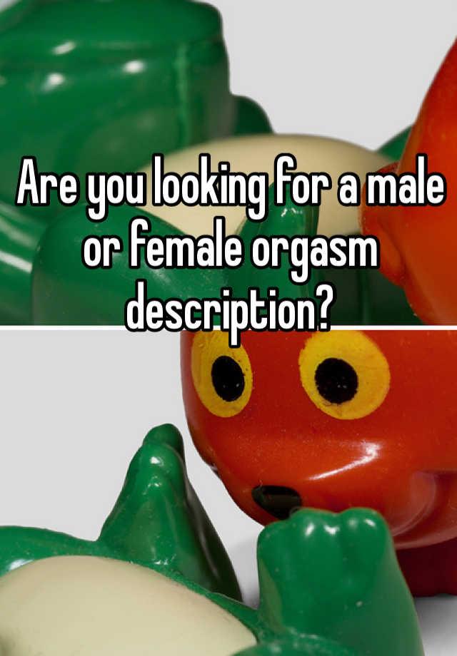 Female orgasm description