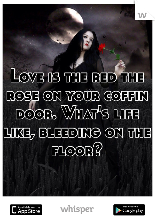 Love is the red the rose on your coffin door. What's life like, bleeding on the floor?