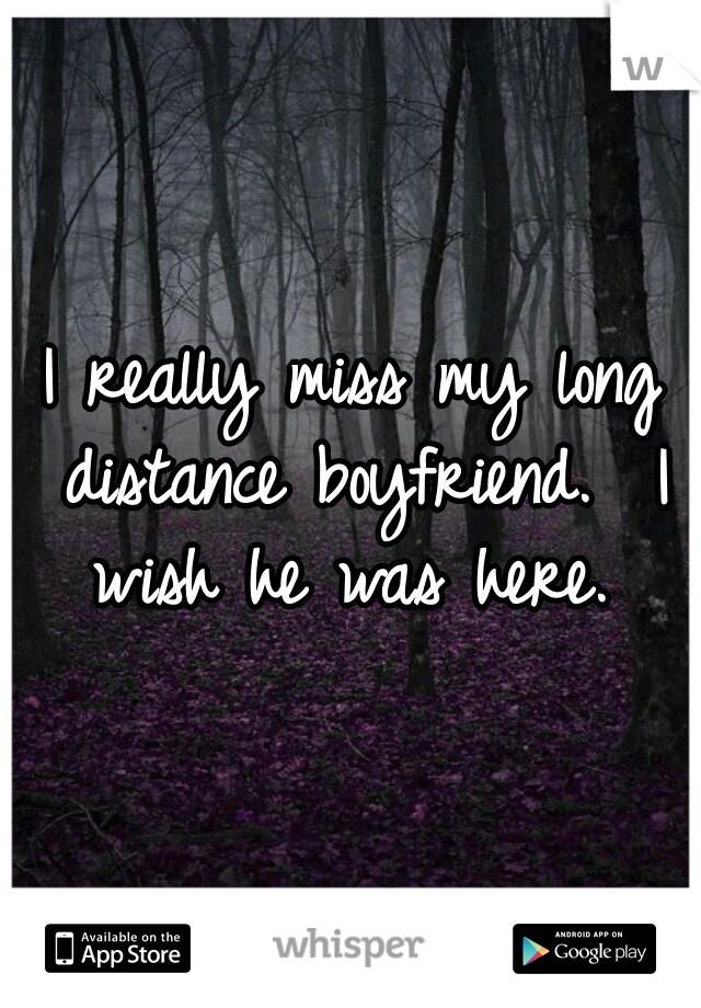 I really miss my long distance boyfriend.  I wish he was here.