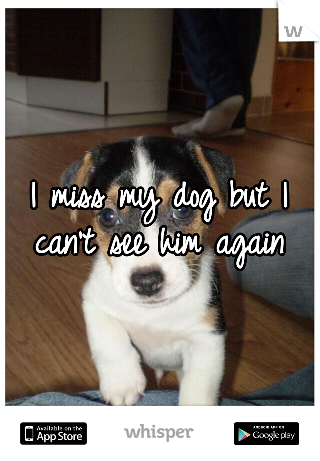 I miss my dog but I can't see him again