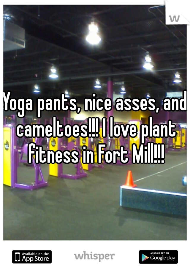 Yoga pants, nice asses, and cameltoes!!! I love plant fitness in Fort Mill!!!