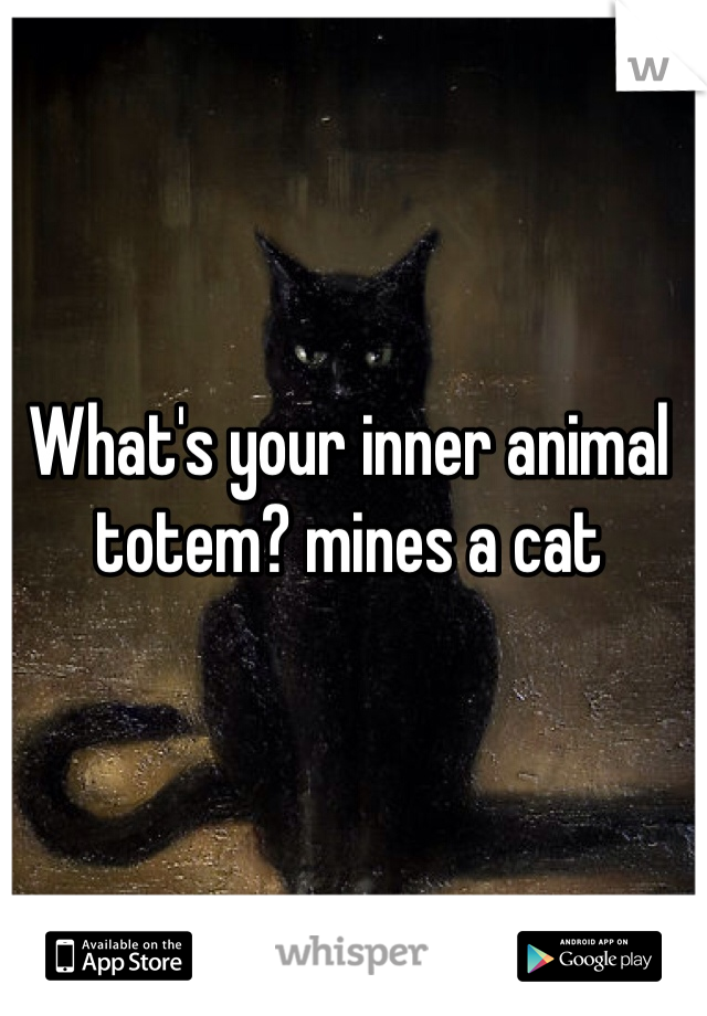 What's your inner animal totem? mines a cat