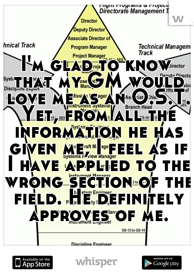 I'm glad to know that my GM would love me as an O.S.T. Yet, from all the information he has given me, I feel as if I have applied to the wrong section of the field. He definitely approves of me.