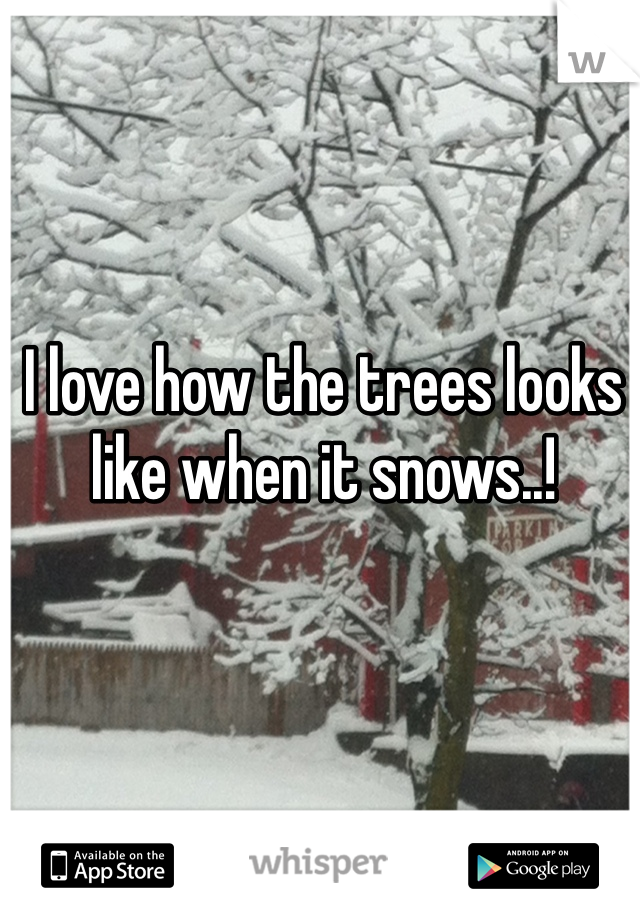 I love how the trees looks like when it snows..!