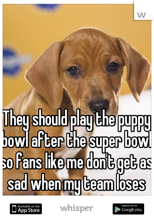 They should play the puppy bowl after the super bowl so fans like me don't get as sad when my team loses