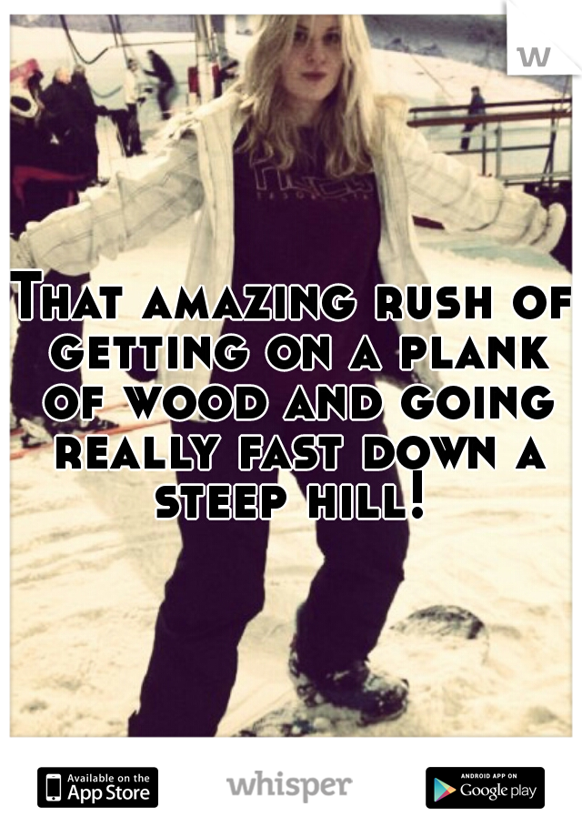 That amazing rush of getting on a plank of wood and going really fast down a steep hill!