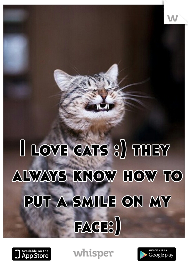 I love cats :) they always know how to put a smile on my face:)