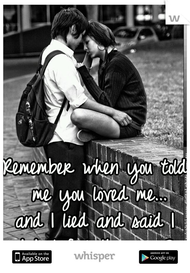 Remember when you told me you loved me... and I lied and said I didn't feel the same?