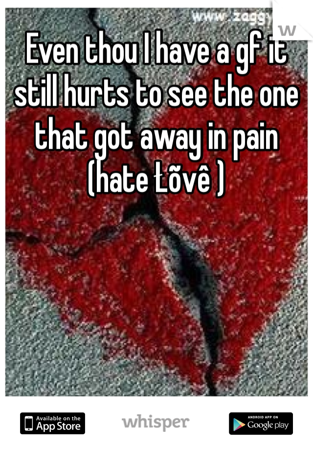 Even thou I have a gf it still hurts to see the one that got away in pain (hate Łõvê )