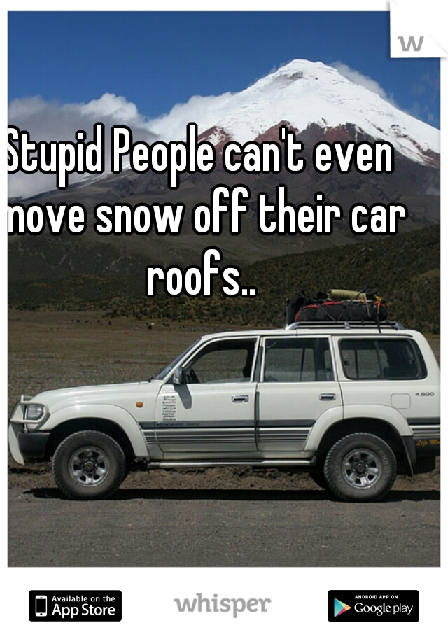Stupid People can't even move snow off their car roofs..