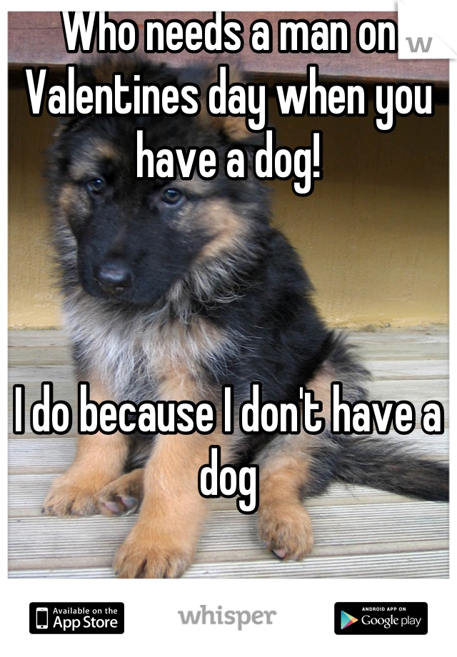 Who needs a man on Valentines day when you have a dog!    I do because I don't have a dog