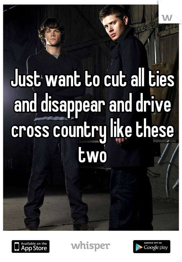 Just want to cut all ties and disappear and drive cross country like these two
