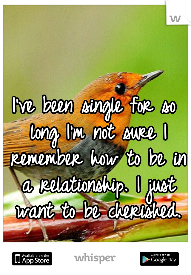 I've been single for so long I'm not sure I remember how to be in a relationship. I just want to be cherished.