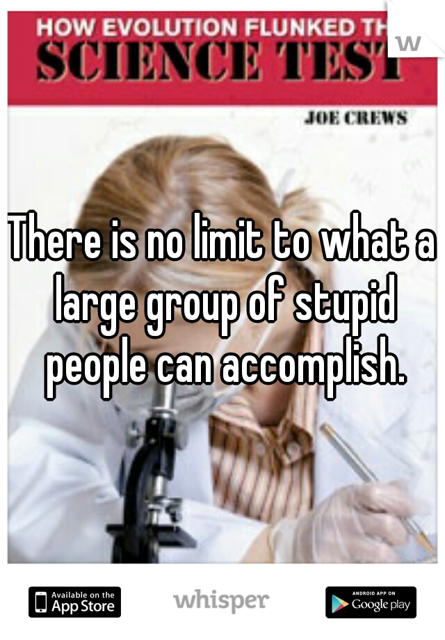 There is no limit to what a large group of stupid people can accomplish.