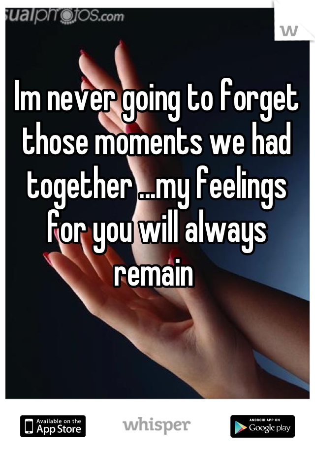 Im never going to forget those moments we had together ...my feelings for you will always remain