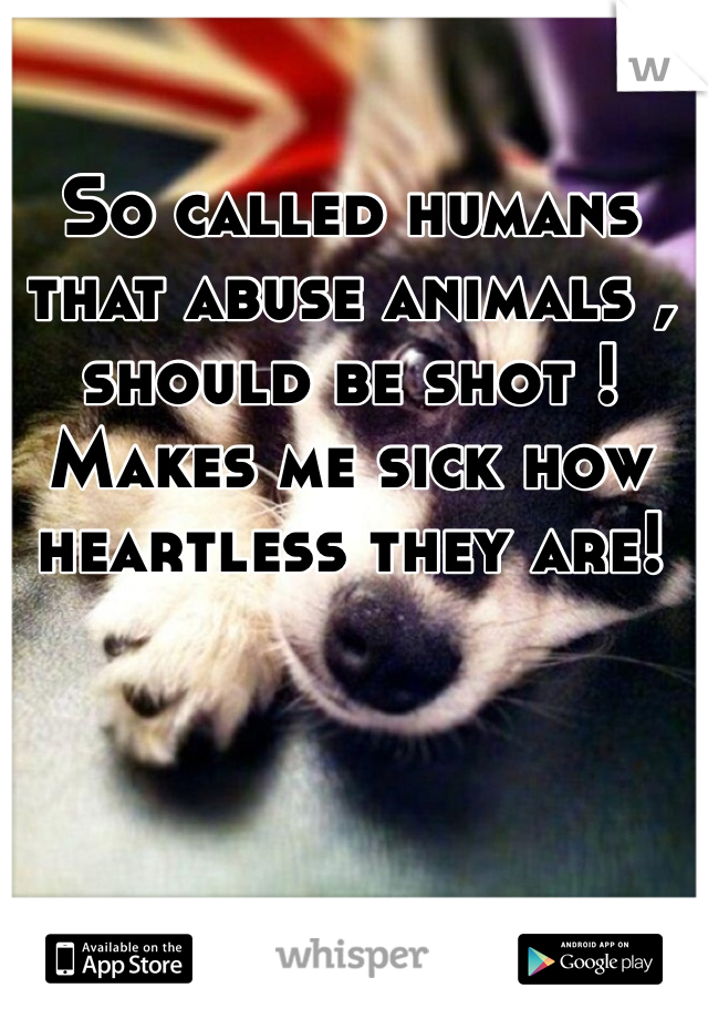 So called humans that abuse animals , should be shot ! Makes me sick how heartless they are!