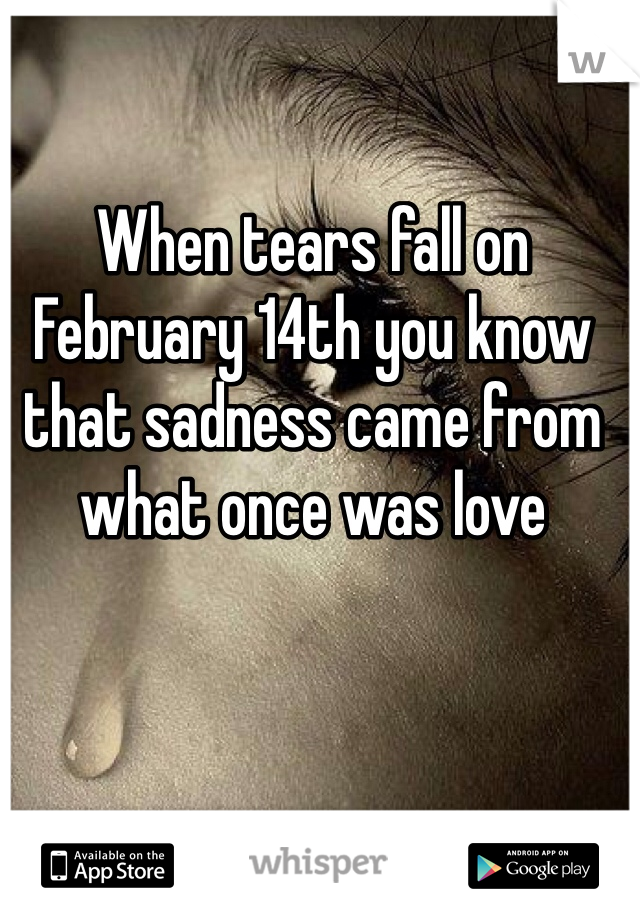 When tears fall on February 14th you know that sadness came from what once was love