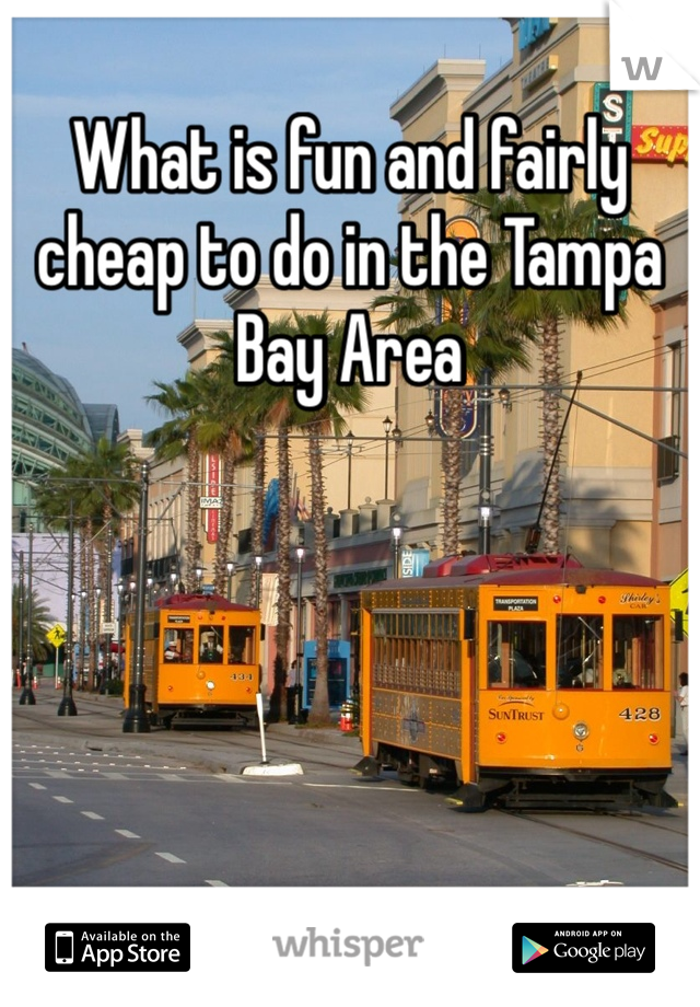 What is fun and fairly cheap to do in the Tampa Bay Area