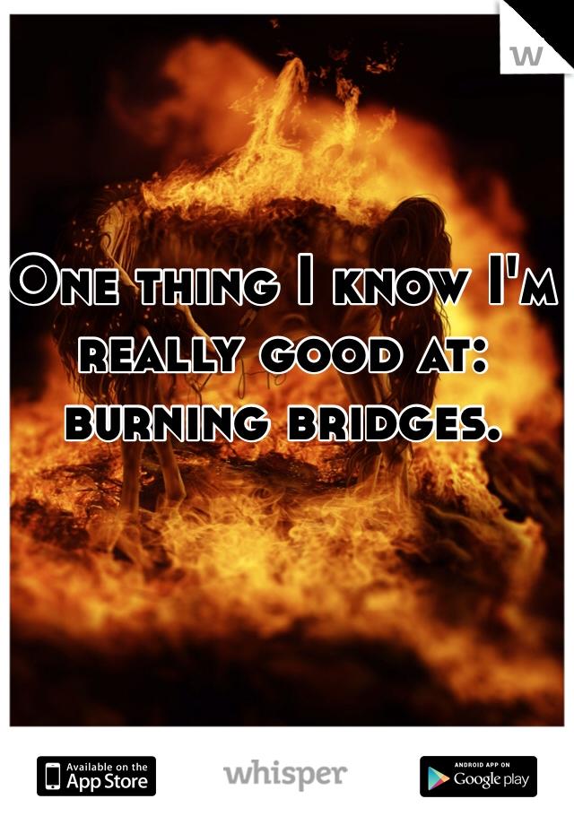 One thing I know I'm really good at: burning bridges.
