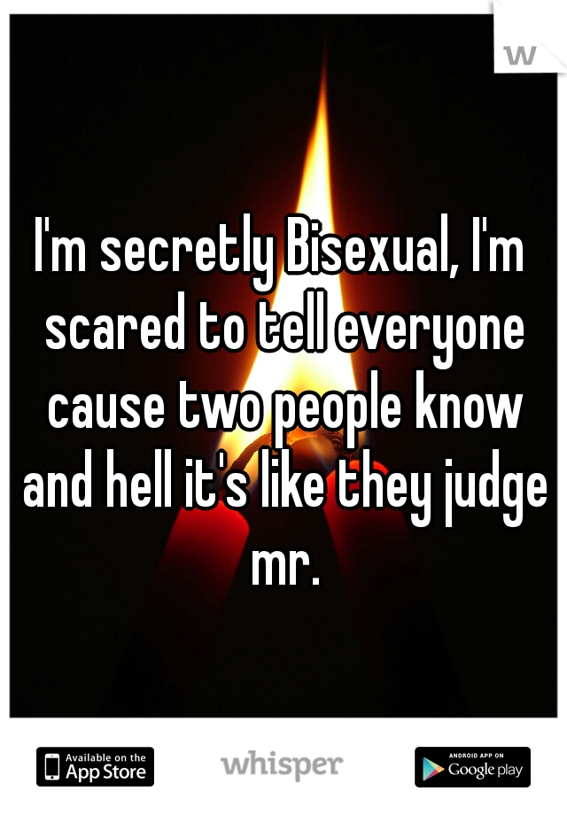 I'm secretly Bisexual, I'm scared to tell everyone cause two people know and hell it's like they judge mr.