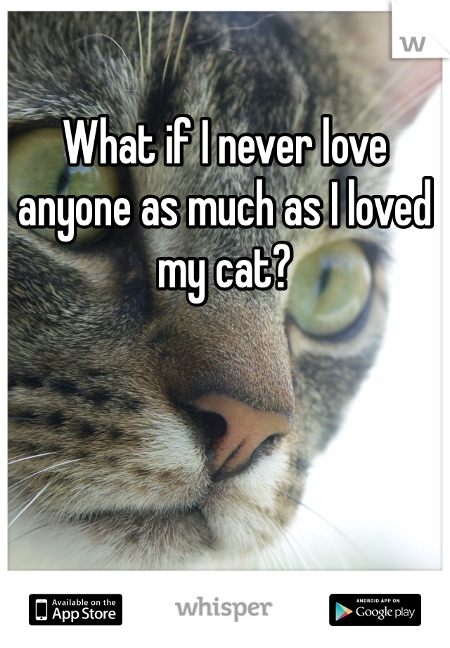 What if I never love anyone as much as I loved my cat?