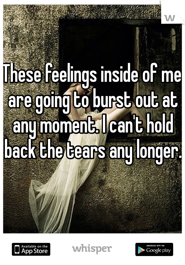 These feelings inside of me are going to burst out at any moment. I can't hold back the tears any longer.