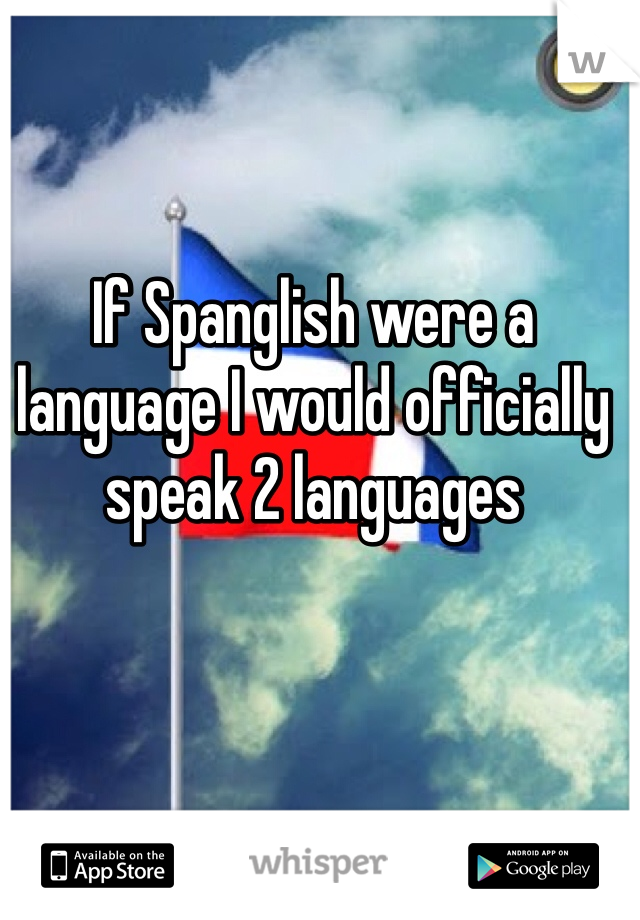 If Spanglish were a language I would officially speak 2 languages