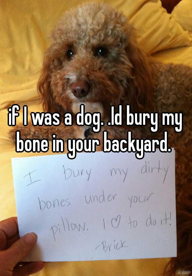If I Was A Dog. .Id Bury My Bone In Your Backyard.