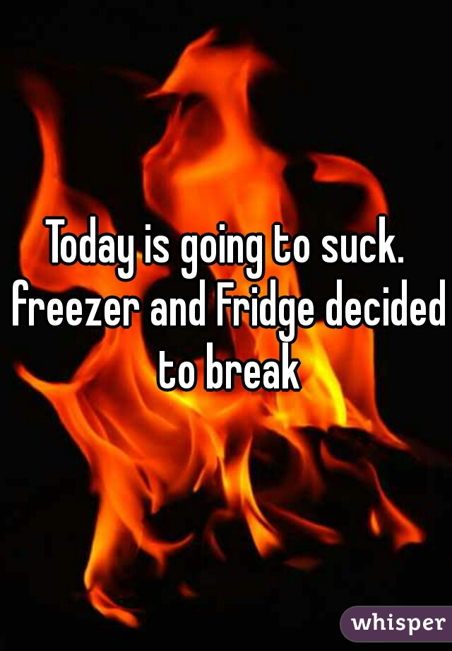 Today is going to suck. freezer and Fridge decided to break