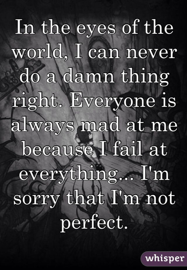 In the eyes of the world, I can never do a damn thing right. Everyone is always mad at me because I fail at everything... I'm sorry that I'm not perfect.