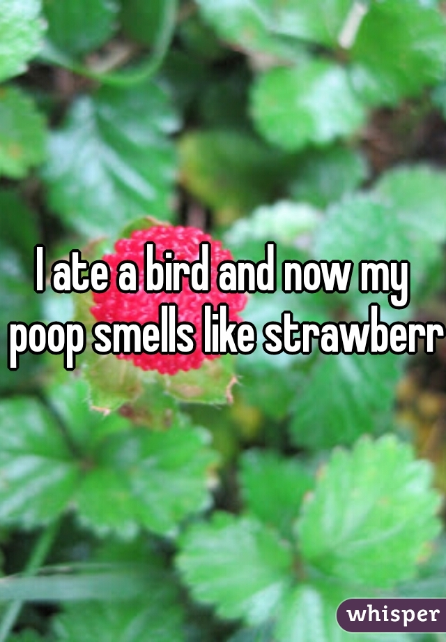 I ate a bird and now my poop smells like strawberry