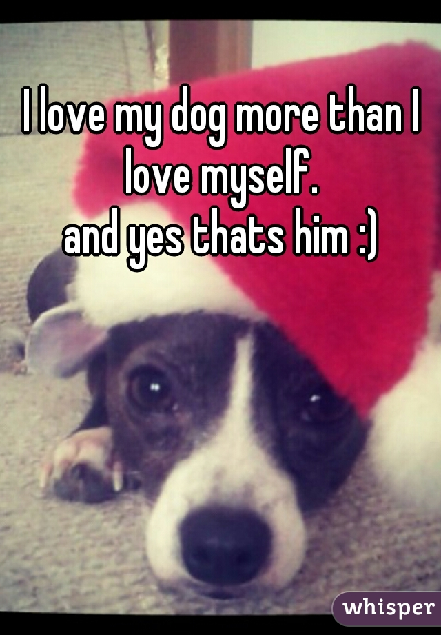 I love my dog more than I love myself.   and yes thats him :)