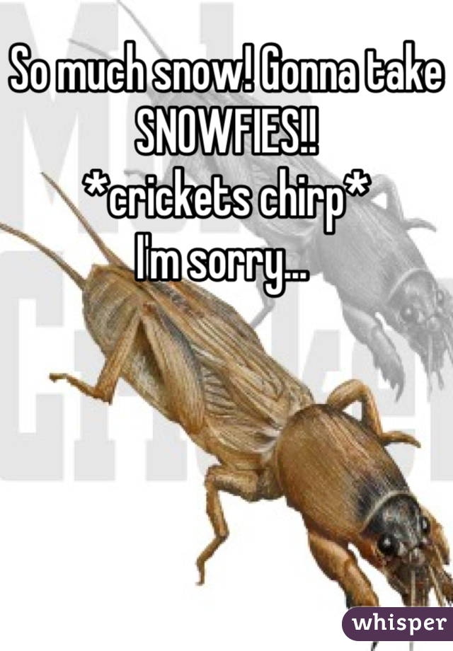 So much snow! Gonna take SNOWFIES!! *crickets chirp* I'm sorry...