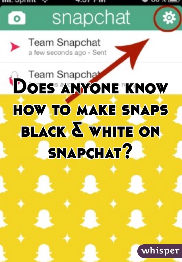 Does anyone know how to make snaps black & white on snapchat?
