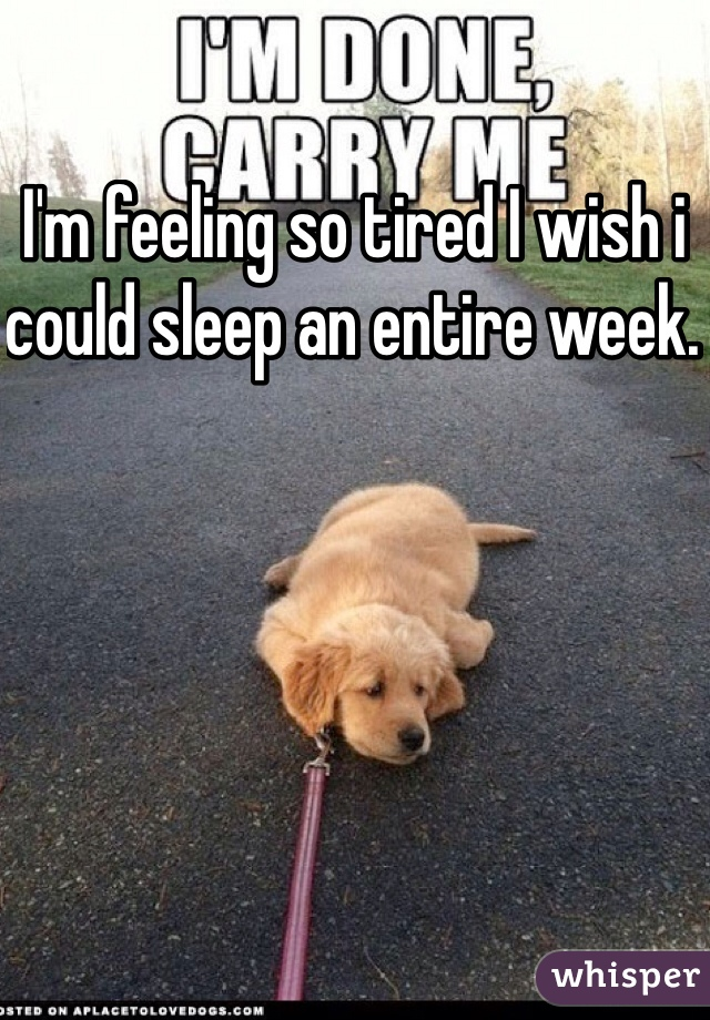 I'm feeling so tired I wish i could sleep an entire week.