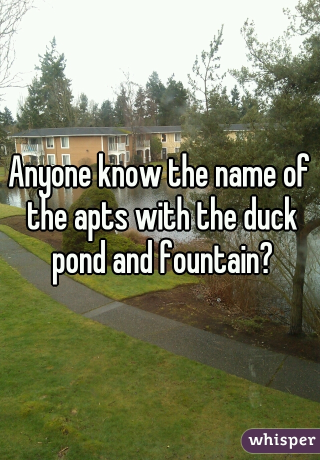 Anyone know the name of the apts with the duck pond and fountain?