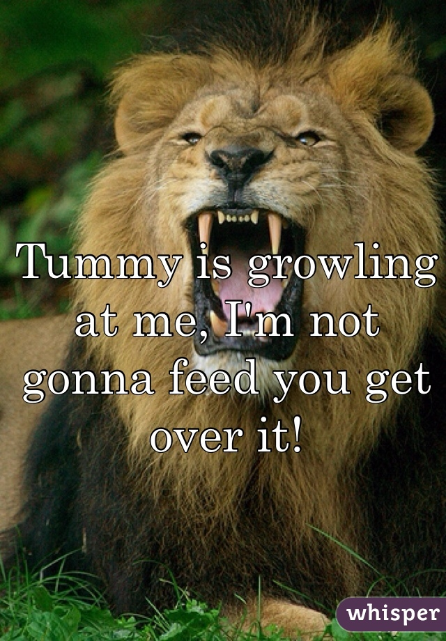 Tummy is growling at me, I'm not gonna feed you get over it!