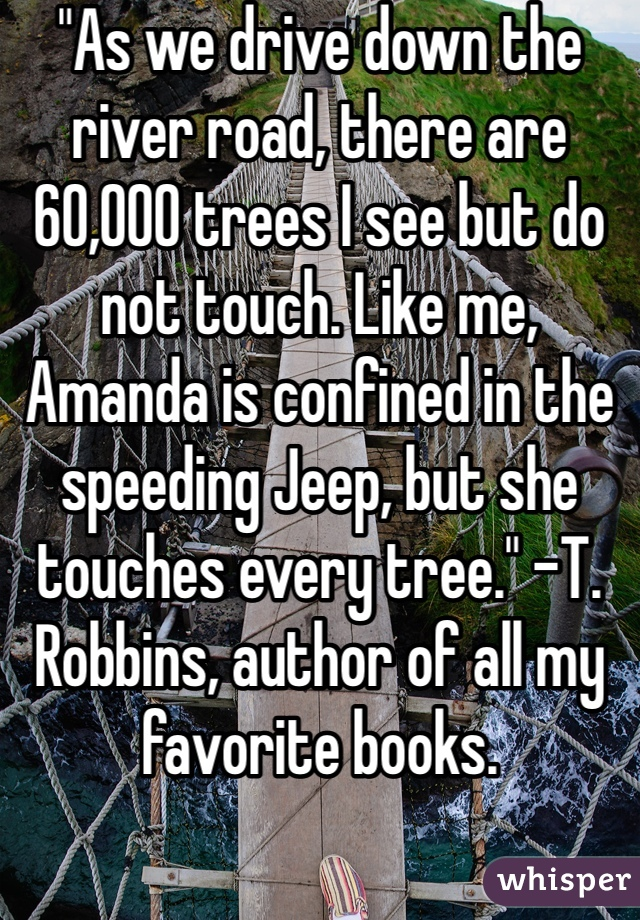 """""""As we drive down the river road, there are 60,000 trees I see but do not touch. Like me, Amanda is confined in the speeding Jeep, but she touches every tree."""" -T. Robbins, author of all my favorite books."""