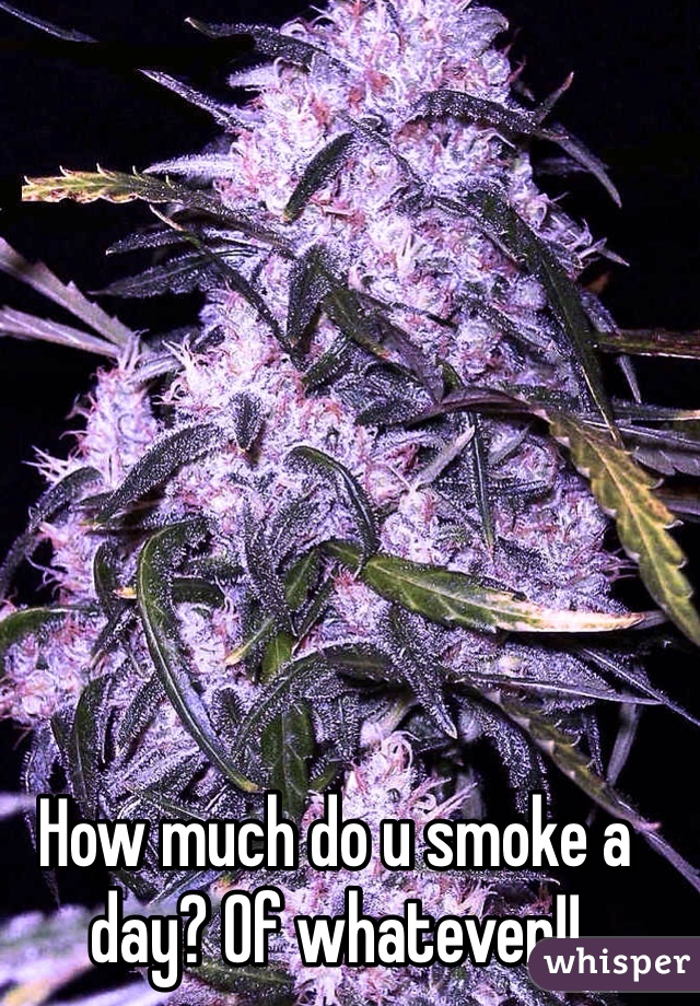 How much do u smoke a day? Of whatever!!