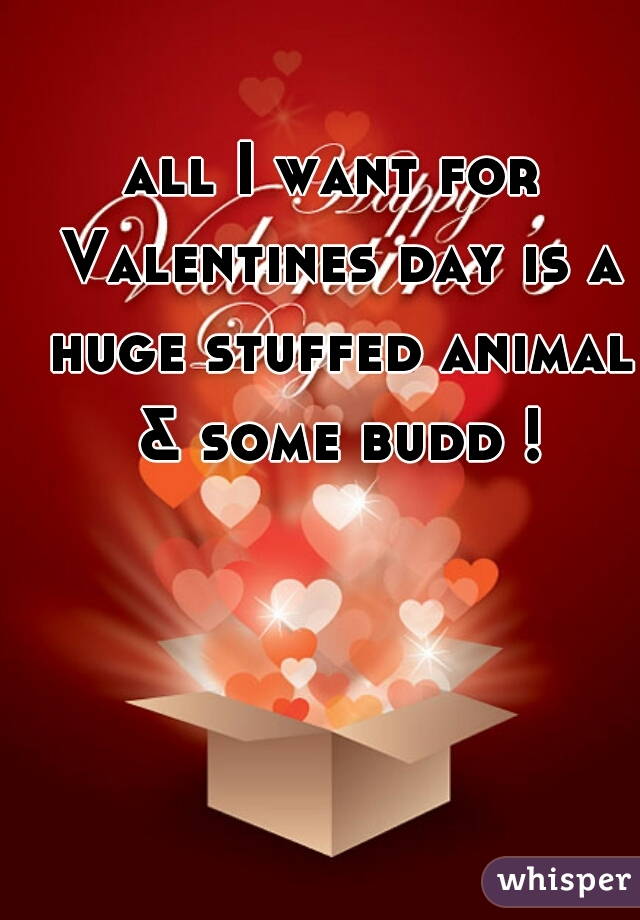 all I want for Valentines day is a huge stuffed animal & some budd !