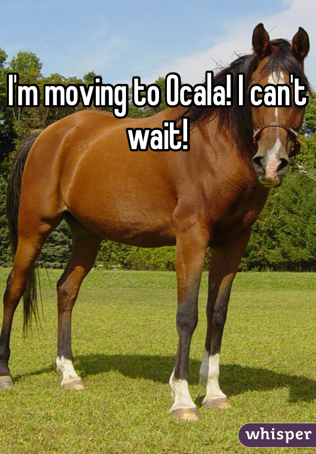 I'm moving to Ocala! I can't wait!