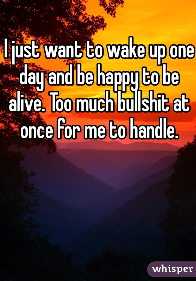 I just want to wake up one day and be happy to be alive. Too much bullshit at once for me to handle.